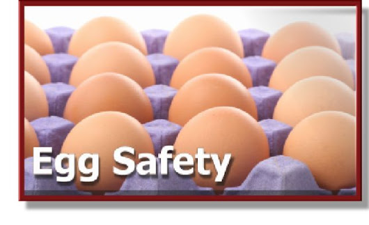 Multistate Outbreak of Salmonella Oranienburg Infections Linked to Good Earth Egg Company Shell Eggs.