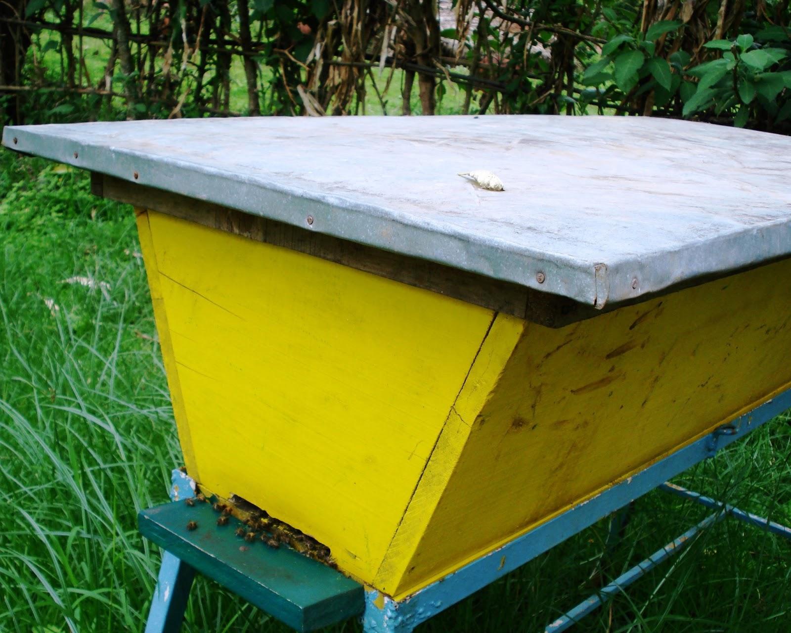 The Peace Bee Farmer: Top Bar Hives