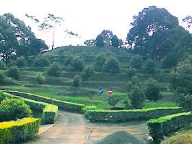 Hortimart Agro Center Kabupaten Semarang