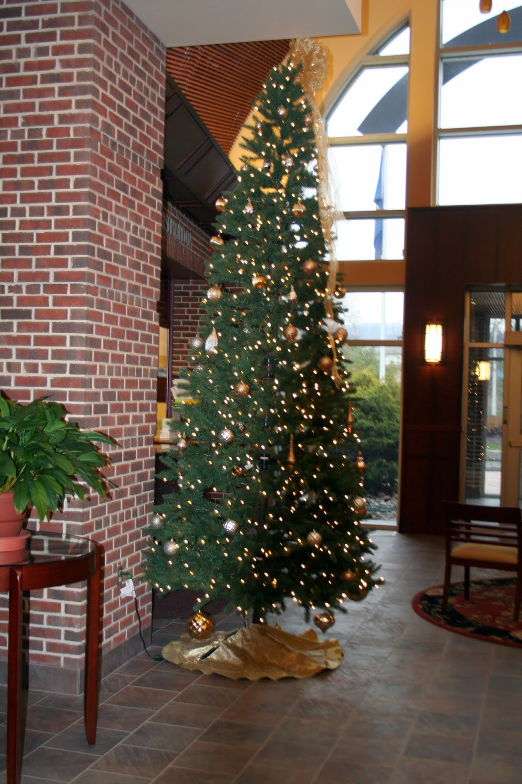 Lehigh valley ramblings bushkill tp has no christmas tree