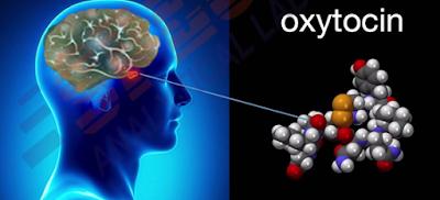 Oxytocin Reaction for Human Body - Latest Indians News