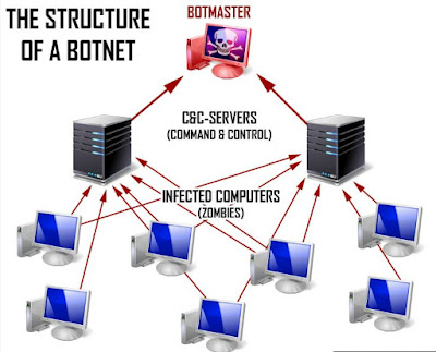 Computer Networking & Types of Networking
