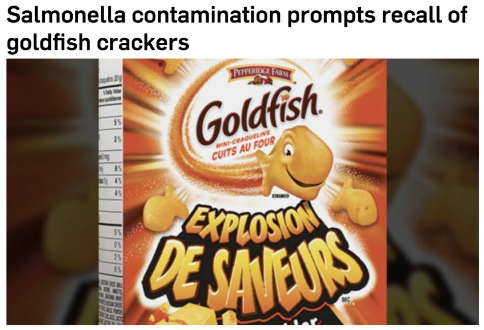 Allarme Salmonella nei cracker Ritz Kellogg's e Goldfish venduti anche Online
