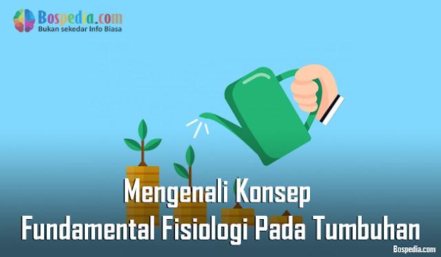 Mengenali Konsep Fundamental Fisiologi Pada Tumbuhan Mengenali Konsep Fundamental Fisiologi Pada Tumbuhan