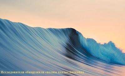 Исследователи обнаружили «волны ходла» биткойна