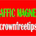 How To Turn Your Site Into A Traffic Magnet