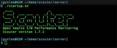 scouter server start up