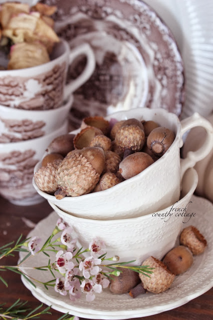 autumn fall vignette acorns in a teacup