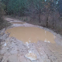 puddle in middle of dirt road