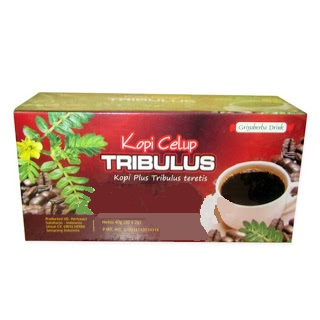 jual kopi celup tribulus di surabaya alami herbal surabaya