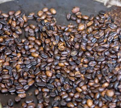 contoh gambar biji kopi luwak yang sudah dibakar