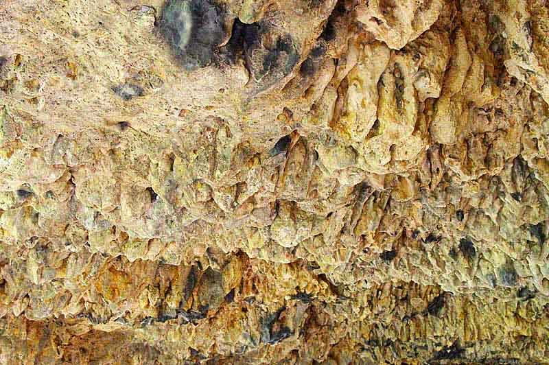 cave ceiling, bat droppings