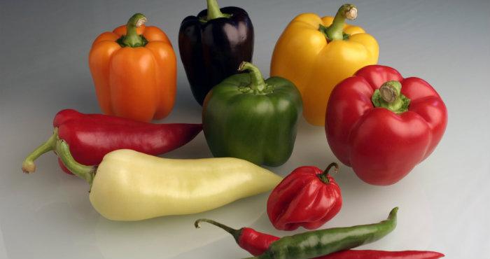 Manfaat Paprika Bagi Kesehatan Tubuh