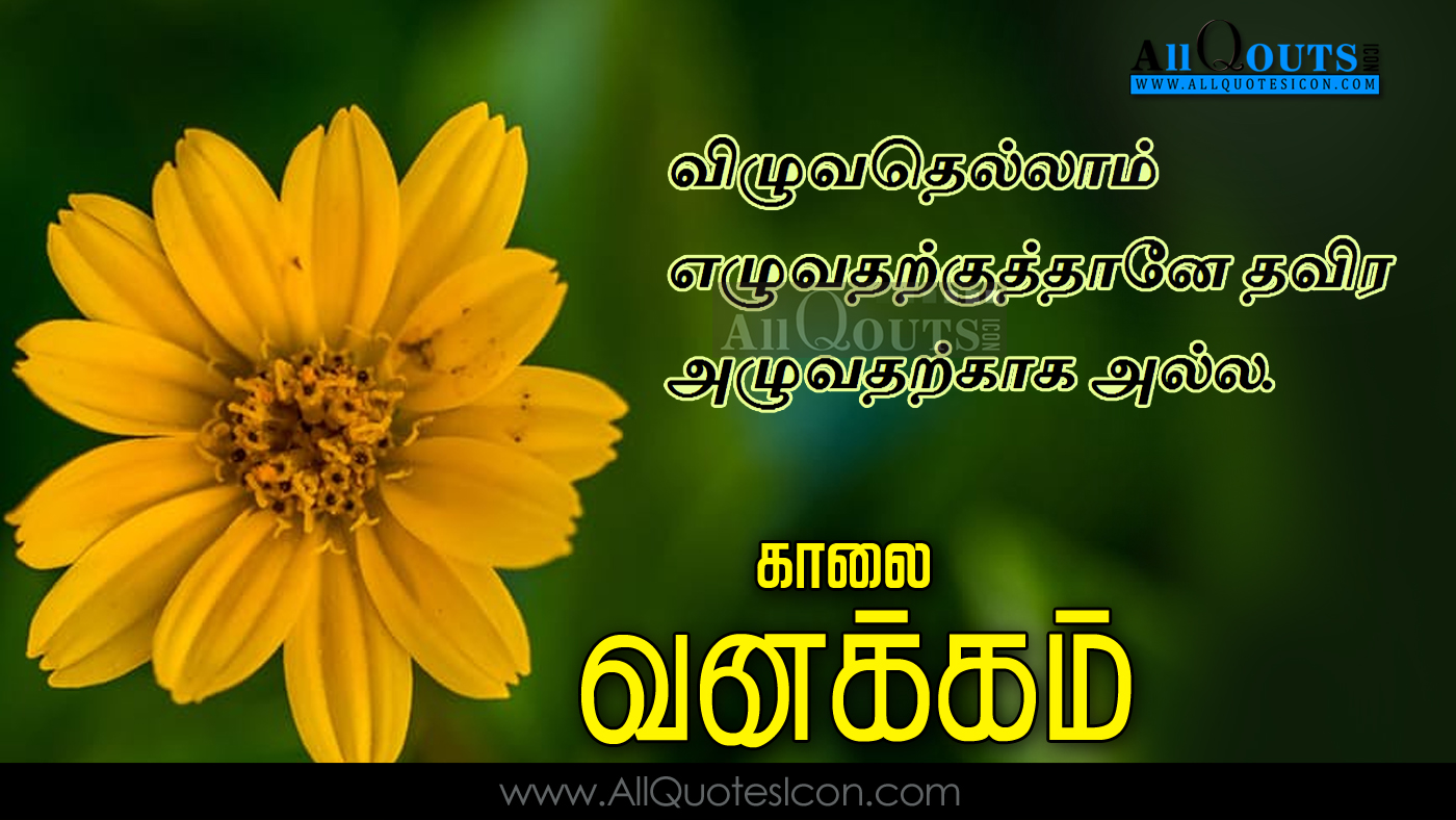 Good Morning Quotes in Tamil , Tamil Quotes 6:00:00 AM