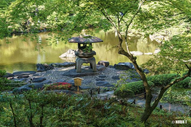 心字池と灯篭~旧古河庭園