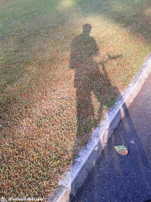 Dihamparan rumput dan jalan paving