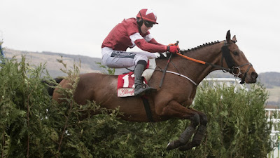 Tiger Roll heading to Grand National 2019