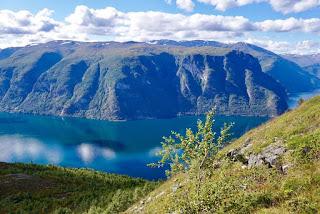 Aurlandsfjord by Terese Kvinge