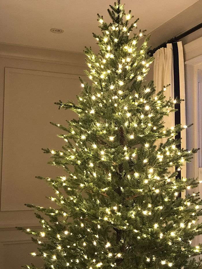 bare christmas tree with white lights