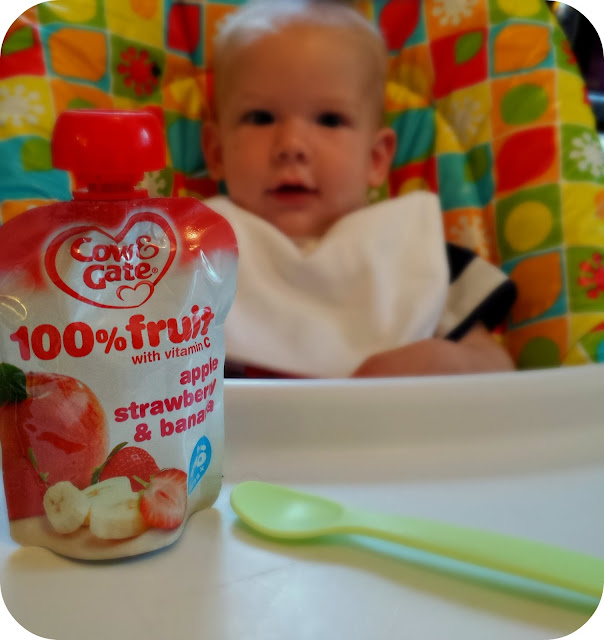 Cow and Gate fruit pouches, Nemums review, weaning,