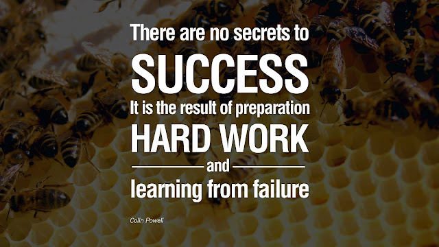 There are no secrets to success. It is the result of preparation handwork and  learning from failure - Colin Powell