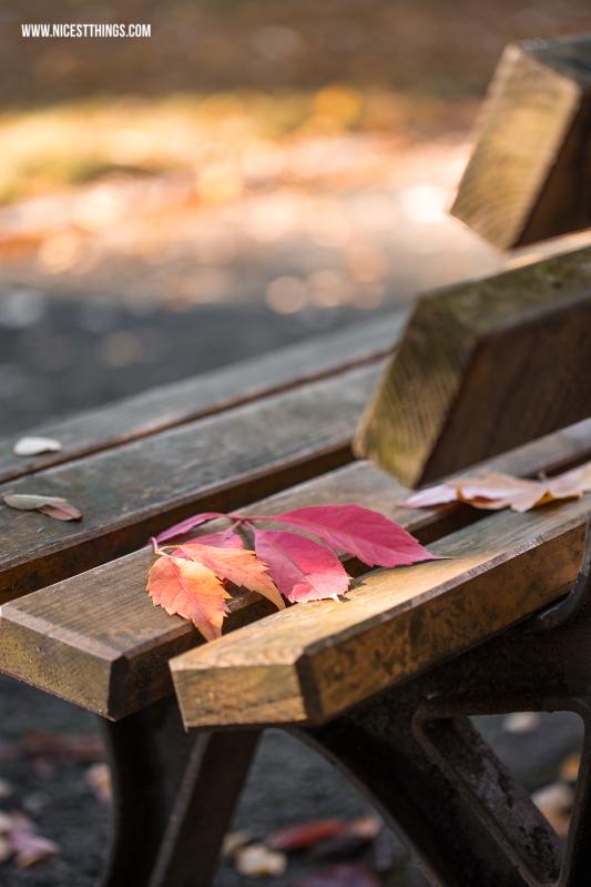 Bank im Herbst mit bunten Blättern
