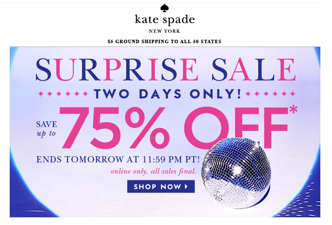 Smart and Sarcastic With Dashes of Insanity: Kate Spade ...