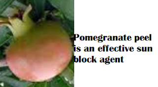 Pomegranate peel is an effective sun block agent