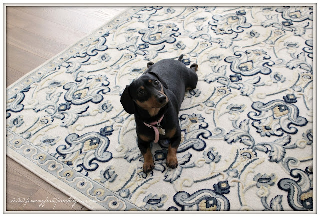 Farmhouse Foyer-Rug-Miniture Doxie- From My Front Porch To Yours