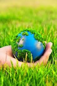 poemas de Ecológia y Medio Ambiente