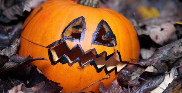 Halloween day pumpkin