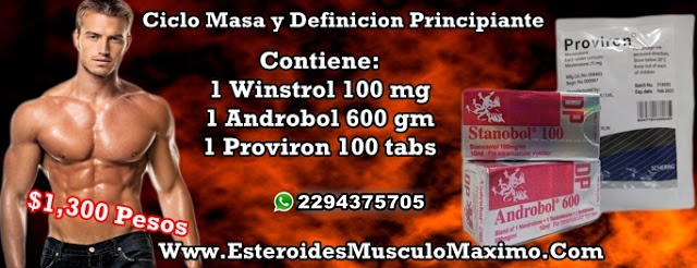 Ciclo de Masa y Definicion Principiante - precio ( $1,300