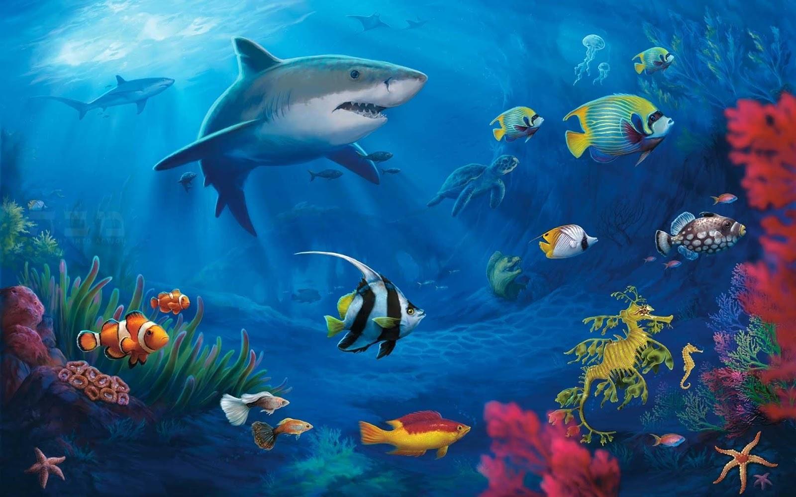 3d Wallpaper Artistic Hd Wallpapers Desktop Ocean Life Hd Desktop Wallpapers