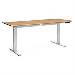 OFM Versa Desk