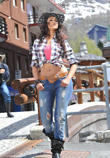 Ileana Latest Picture Shoot Stills (7)