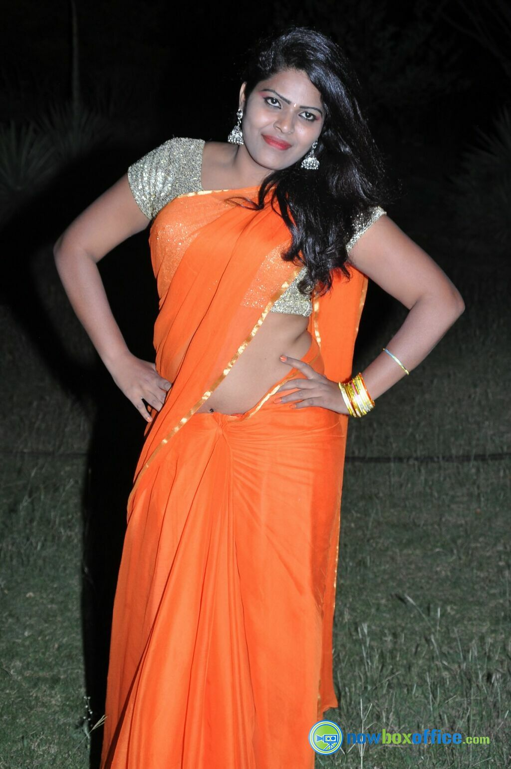 Indian Hot Actress South Indian Hot Sithara Aunty-2856