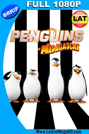Los Pingüinos de Madagascar (2014) Latino FULL HD 1080P ()