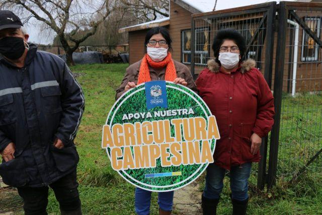 Pequeños agricultores de Pichidamas beneficiados con alimento para sus animales