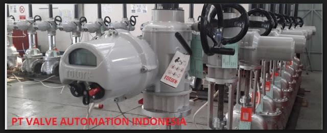 pt valve