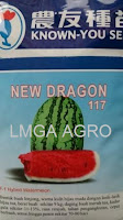 benih semangka, semangka berbiji, semangka lonjong, semangka new dragon, lmga agro