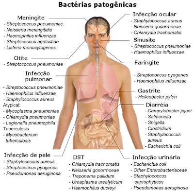 Bactérias causadoras de doenças