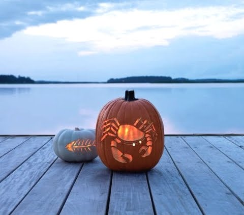 pumpkin carving ideas sea theme
