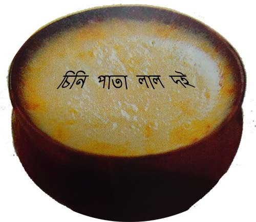 Famous Bengali Sweet Yogurt