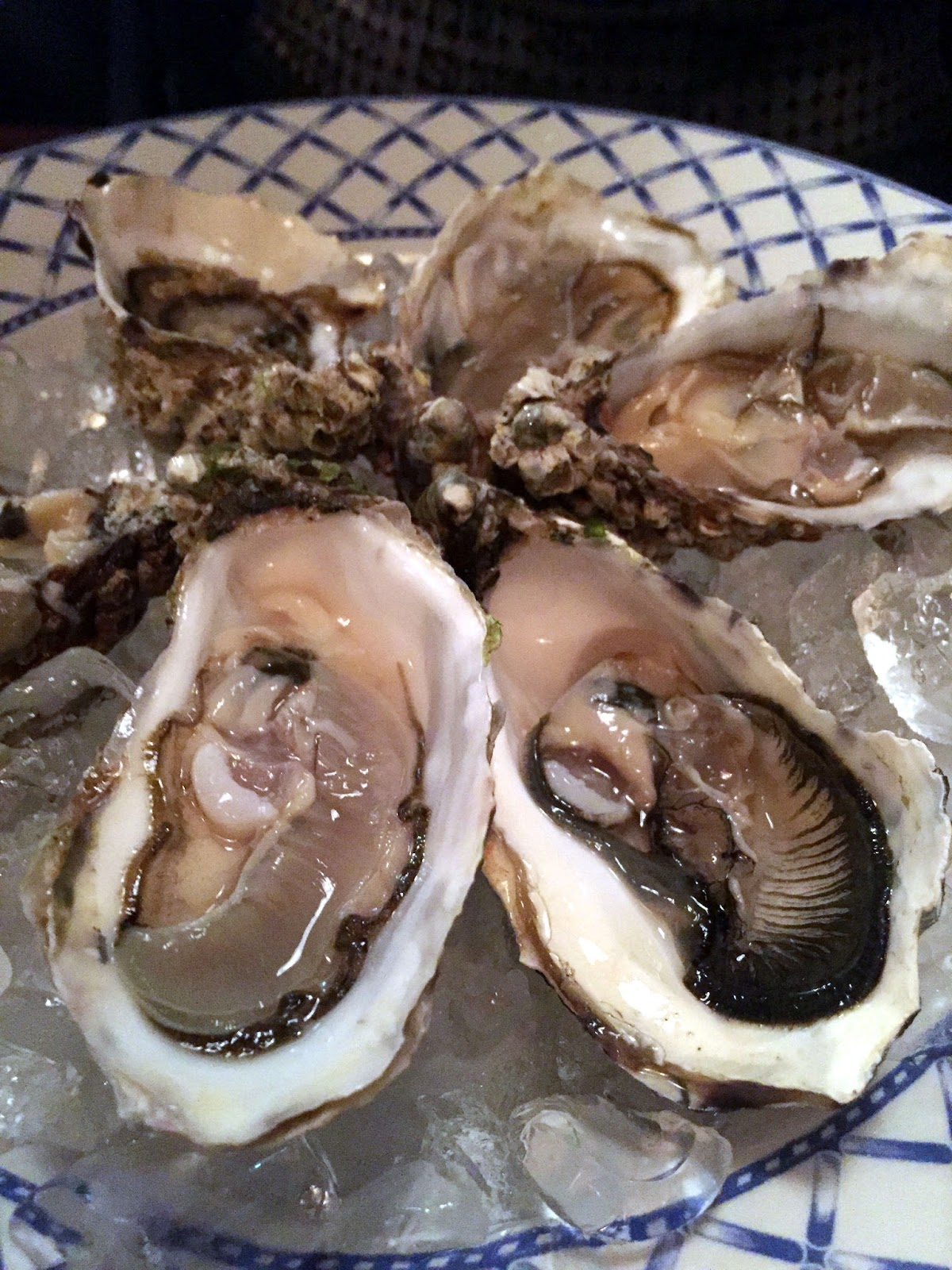Stitch & Bear - Rosa Madre - Irish oysters
