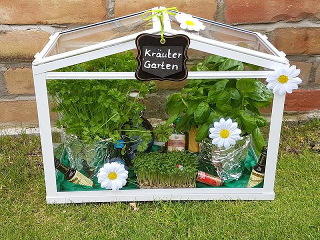 Kräutergarten als Geschenk im Gewächshaus