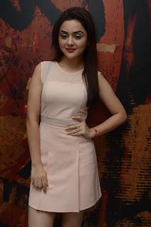 Ragini Nandwani At Siddhartha Movie Success Meet (22).JPG