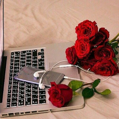 laptop and red rose dp
