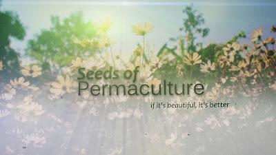 Σπόροι της Περμακουλτούρας