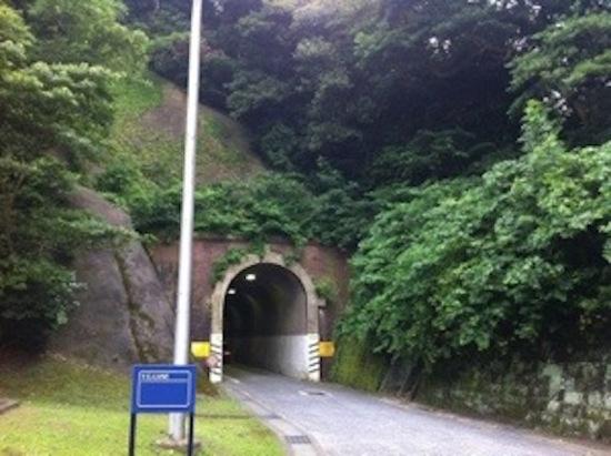 Terowongan Gridley