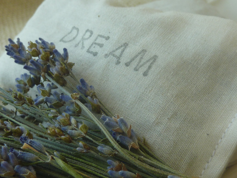 Michigan Medical Marijuana Report: Dream Pillows: The ...
